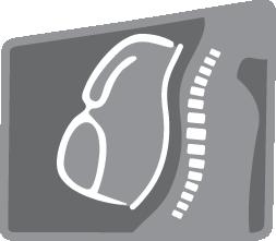 Anatomická záda